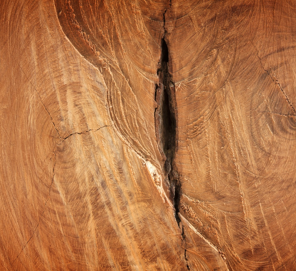 Why Cracks Form In Wood Fences And How To Avoid Them