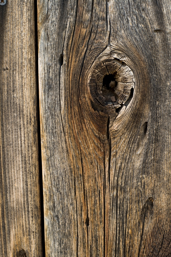 how to maintain a wood fence through the changing seasons the