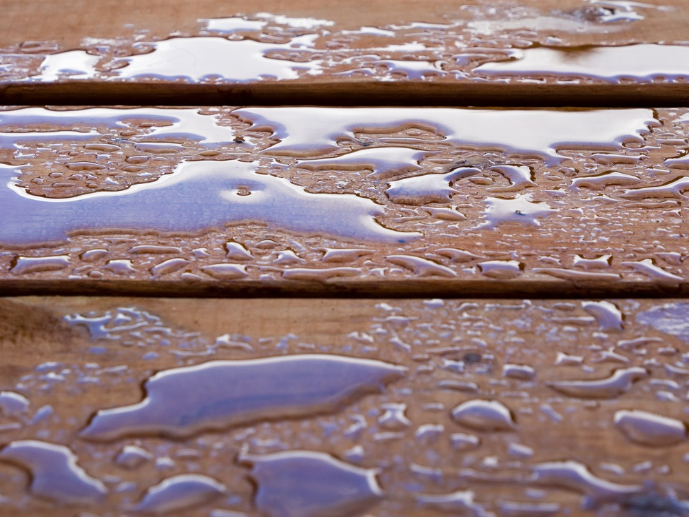 If your deck has been properly waterproofed, water will bead on the surface instead of absorbing into the wood.