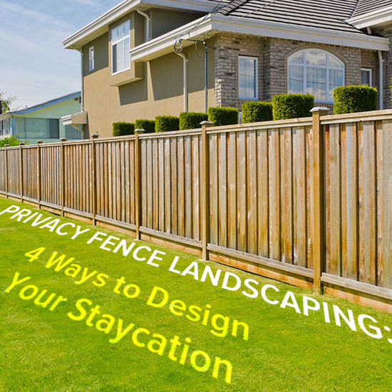 Landscaping Around A Privacy Fence Create A Tropical Oasis